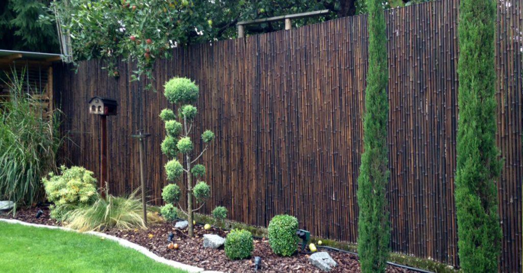 bambus sichtschutz im garten